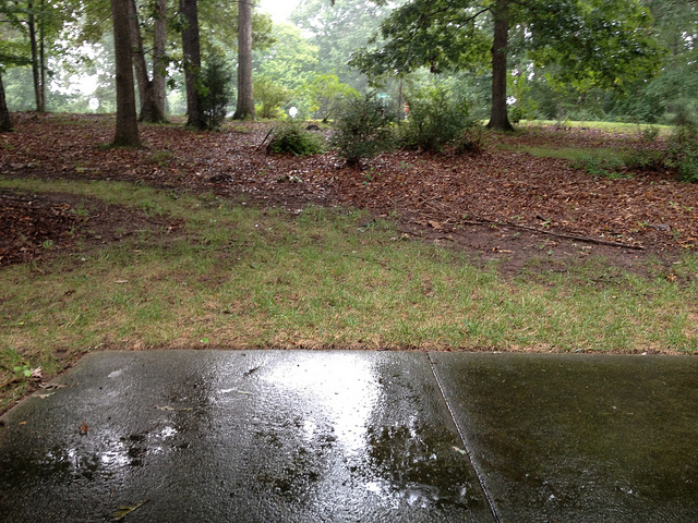 a rainy day in Raleigh North Carolina