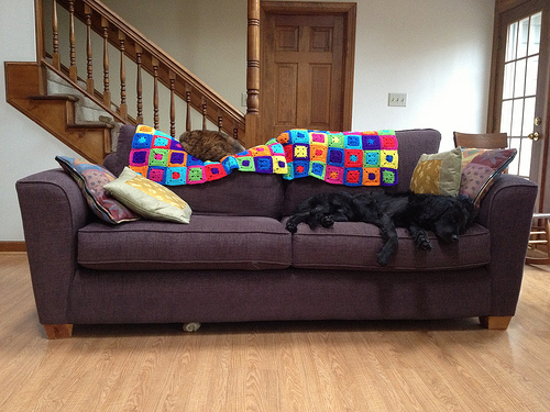 crochetbug, crochet squares, cochet permutations, dog sofa, clooney, crochet throw