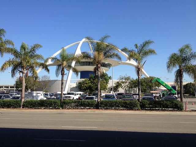 palm trees at LAX