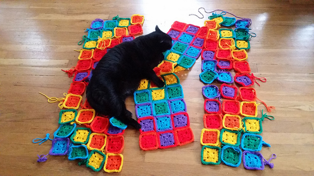 My oldest son's cat inspects my crochet work