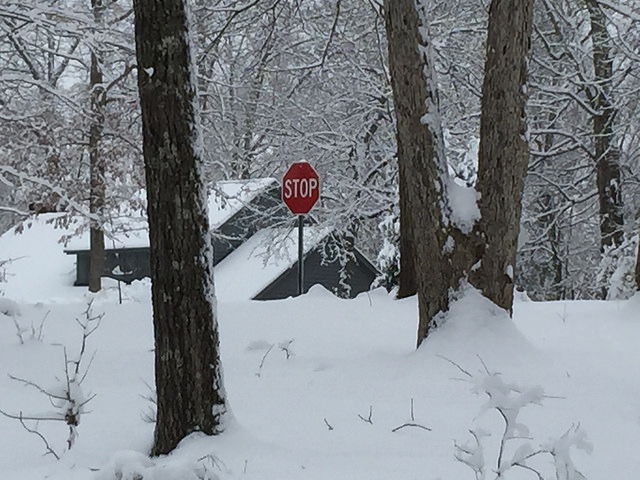 snow day Raleigh, North Carolina