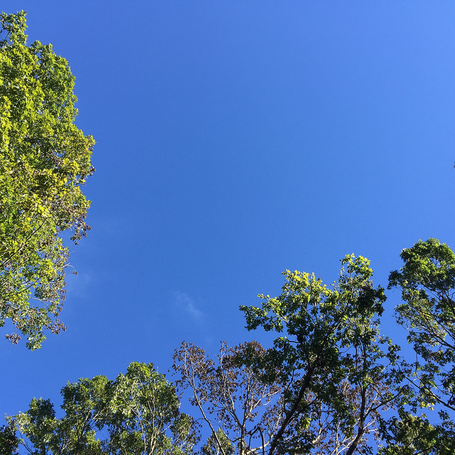 Here comes the sun: Clear skies over Raleigh