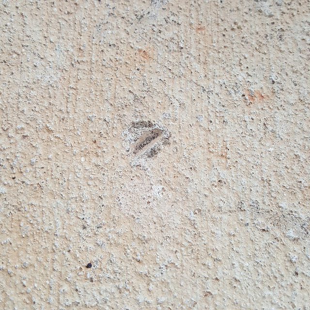 crochetbug, crochet photos, cement mark