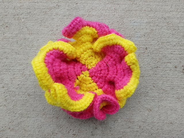 A view of the interior of a crochet hyperbolic plane